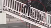 (Özel) Engelli Vatandaşa İşkence Gibi Uygulama Kamerada...