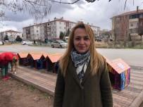 Nasreddin Hoca Parkı'na Sokak Hayvanları İçin Yeni Kulübeler Yerleştirildi