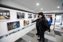 Pandemiyle 1 Yıl Sergisi İlgi Görüyor