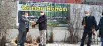 Türkeli'de Vatandaşlara Fidan Dağıtımı Yapıldı