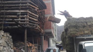 60 Hanenin Yandığı Köye Yardım Yapmak İsteyenler İçin Köy Muhtarı Duman Uyardı