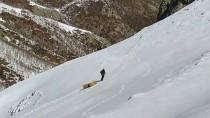 Bingöl'de Ekipler Karlı Dağlara Yaban Hayvanları İçin 36 Ton Yem Bıraktı