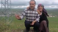 Iğdır'da Evli Çift Araç İçinde Ölü Olarak Bulundu