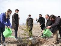 Başkan Çolakbayrakdar, Gara Ve Bitlis Şehitlerinin Anısına Ağaç Dikti