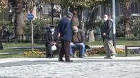 En Yaşlı İl Sinop'ta Yaşlıların Enerjileri Yüksek