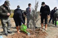 Karaman'da 'Dünya Ormancılık Haftası' Etkinlikleri