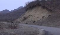 Tunceli'de Sürü Halinde Yola İnen Domuz Sürüsü Görüntülendi
