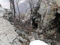PKK'lı Teröristlere Ait 2 El Yapımı Patlayıcı Jandarma Ekiplerince İmha Edildi