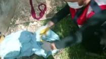Şanlıurfa'da Sulama Borusu İçerisinde 4 Uzun Namlulu Silah Ele Geçirildi