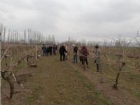 Bağcılık Yapan Çiftçilere Budama Eğitimi Verildi