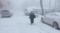 Bingöl Karlıova'da Tipi Etkili Oldu, 86 Köy Yolu Ulaşıma Kapandı