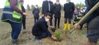 Daday'da 200 Üryani Eriği Toprakla Buluştu