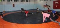 Siirtli Evin Demirhan, Olimpiyatlara Katılmaya Hak Kazandı