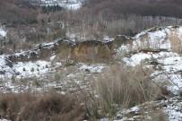 Türkeli'de Toprak Kayması