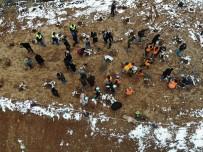 Kastamonu'da Rehabilite Edilen Çöp Sahasına Bin Fidan Dikildi