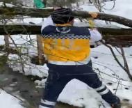 Vakaya Giden 112 Ekibinin Yola Devrilen Ağaçla Mücadelesi