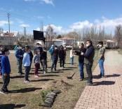 Tomarza'da Öğrenciler Ve Öğretmenler Okul Bahçelerine Ağaç Dikti