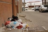 Eskişehir'de Bazı Vatandaşlar Çöp Konteynırına Alışamadı