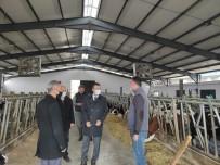 Kaymakam Akpay Çiftlikleri Ziyaret Etti