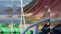 Tekirdağlı Balıkçılar Deniz Salyası Nedeniyle Av Sezonunu Erken Kapattı