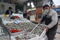 Sinoplu Balıkçılar Bu Sezon Umduğunu Bulamadı