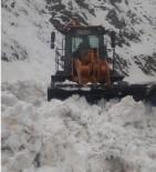 Bingöl'de Çığ Düştü, Kapanan Yol Kısa Sürede Açıldı