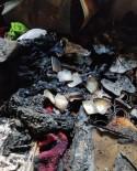 Kozluk'ta Çıkan Yangında Yaşlı Kadının Evi Küle Döndü