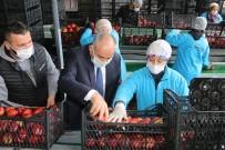 Başkan Öztürk; 'Elma Üreticilerinin Sorunlarını Çözmek İstiyoruz'