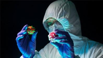 Koronavirüste yeni risk grubu keşfedildi
