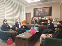 UNICEF Türkiye Direktörü Dominicis'in Kilis Temasları