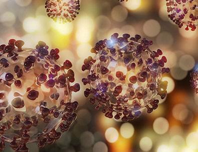 Brezilya'da yeni tür koronavirüse rastlandı!