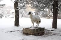 Nisan Ayında Karaman'a Yağan Kar, Ulaşımı Ve Hayatı Olumsuz Etkiliyor