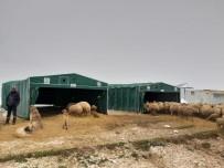 Yaylada Mahsur Kalan Koyuncuların İmdadına Kocasinan Belediyesi Yetişti