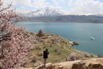 Badem Ağaçlarının Çiçekleri İle Renklenen Akdamar Adası'na Ziyaretçi Akını