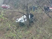 Kastamonu'da Ağaca Takılan Araç Uçuruma Yuvarlanmaktan Kurtuldu Açıklaması 2 Yaralı