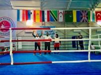 Kick Boks Şampiyonasına Damga Vurdular