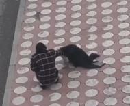 Batman'da Üşüyen Köpeğin Üzerine Montunu Örttü