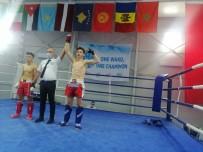 Kick Boks Avrupa Kupasında Denizli Başarısı