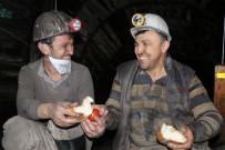 Madencilerin Yerin 300 Metre Altında İlk Sahuru