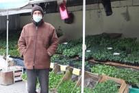 Iğdır'da Soğuk Hava Fide Satışlarını Olumsuz Etkiliyor