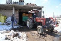 Kayseri'deki Patatesler 81 İle Gönderiliyor