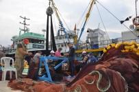 Ordulu Balıkçılar Sezonu Değerlendirdi Açıklaması 'Palamut Yüz Güldürdü, İstavrit Kötü Geçti'