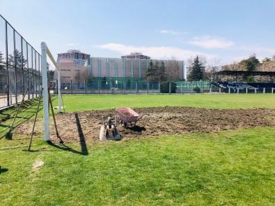 Sümer Stadı Bakıma Alındı