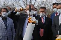 Diyarbakır'da İlk Kez Kestane Ağacı Aşılandı