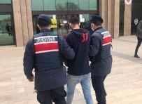 Kabak Çekirdeği Hırsızı Tutuklandı