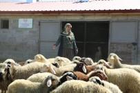 Köyde Yaşamak İsteyenlere Proje Desteği