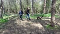 Çekmeköy'de Ormanlık Alanda Kaybolan Şahsı Arama Çalışmaları Sürüyor