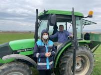 Aslanapa'da ''Tekfen 2064'' Yeni Çeşit Buğday Gübreleme Çalışmaları