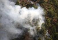 Muğla'da İki Farklı Noktada Orman Yangını Çıktı