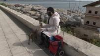 (Özel) Pendik'te Kısıtlama Günü Sokak Hayvanlarını Unutmadı, Tek Tek Besledi